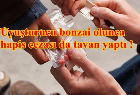 Kargı Havadis  Tarafsız İnternet Haber Gazetesi